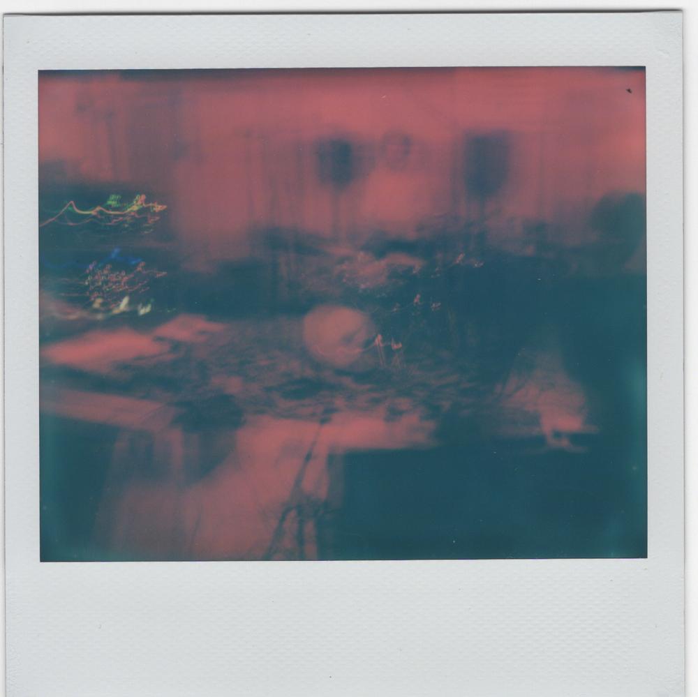 web polaroid 23.png
