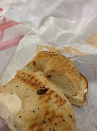 Fly found toasted into a a bagel from the HW Tim Horton's. MANAN PATEL/THE UNDERGROUND