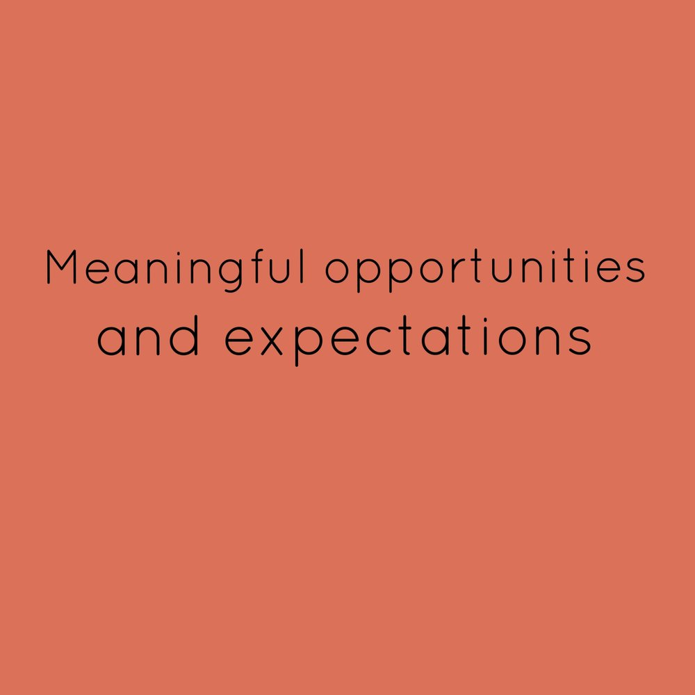 4. Meaningful opportunities and expectations