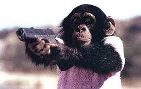 chimpgun
