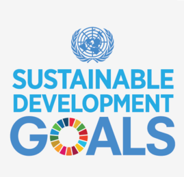 Sustainable development goals.png