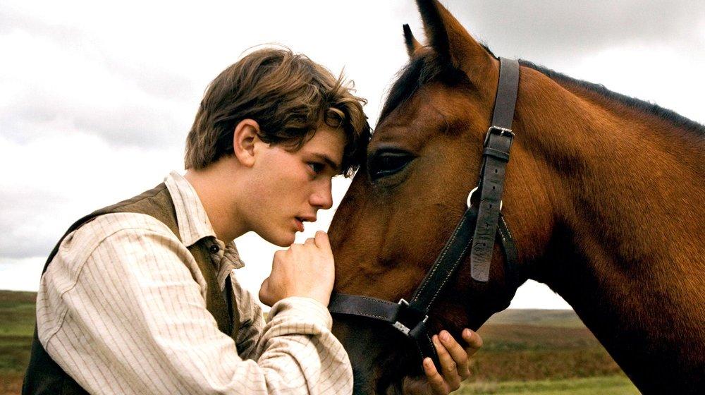 lemons-cottage-holiday-war-horse-film.jpg
