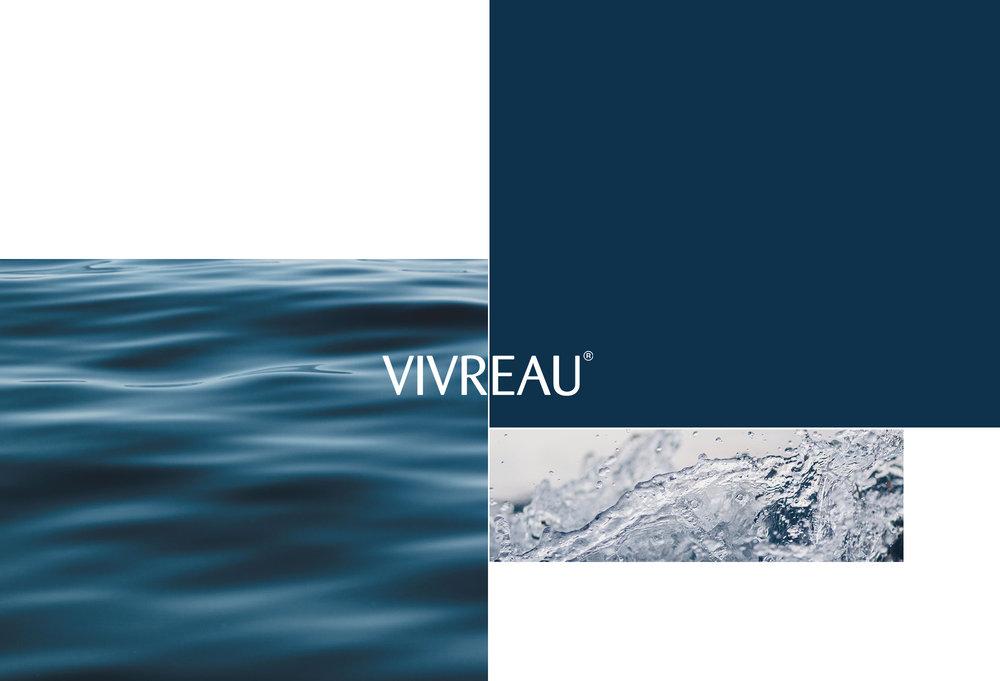 Vivreau-Executive Summary
