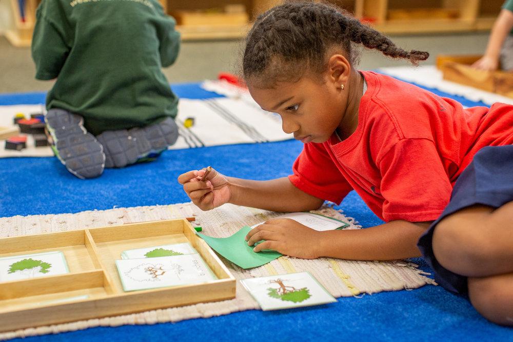 Why Montessori -
