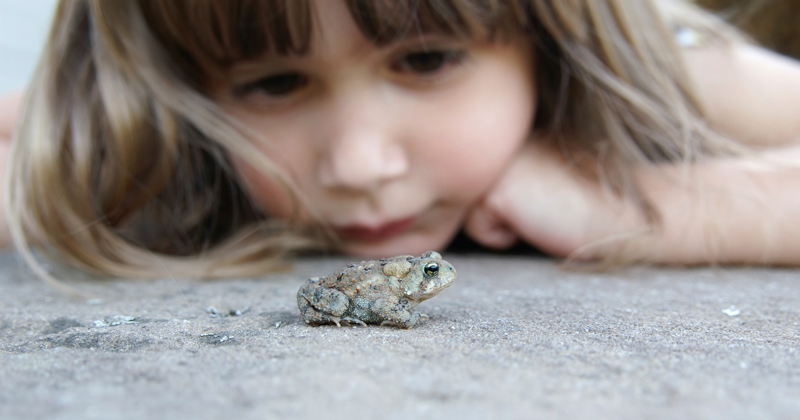 girlandfrog.jpg