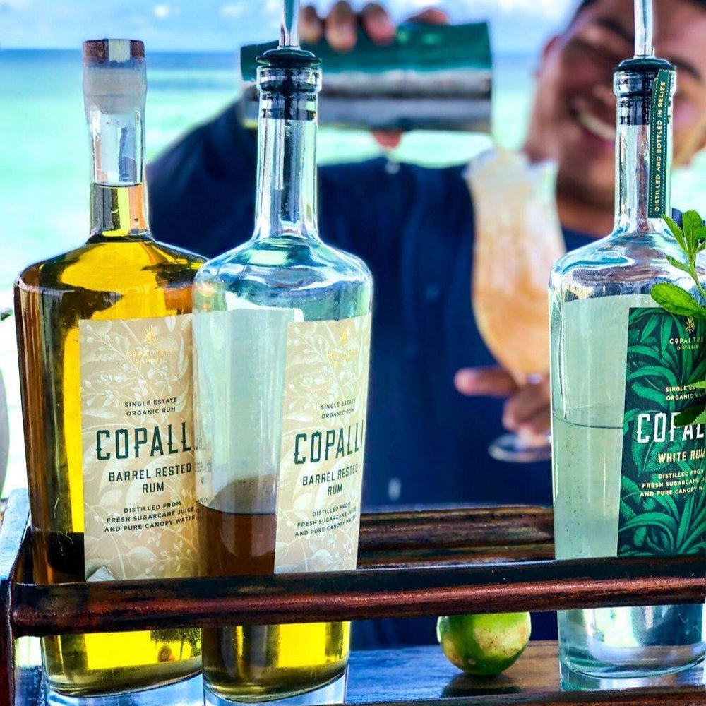 Copalli+bar.jpg