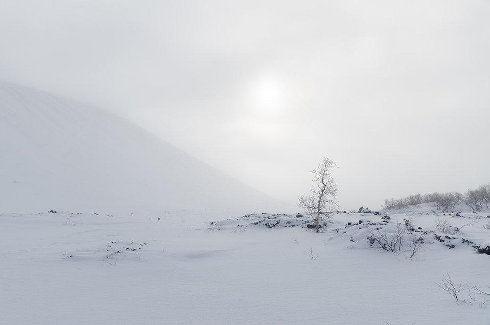 Iceland-Snowy-field.jpg
