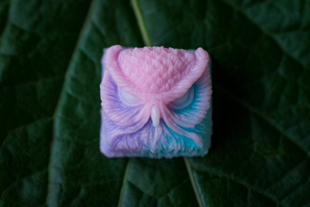 Cotton Candy Keypora