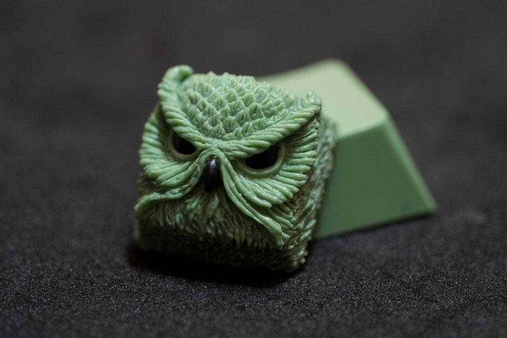 9009 Sage Keypora