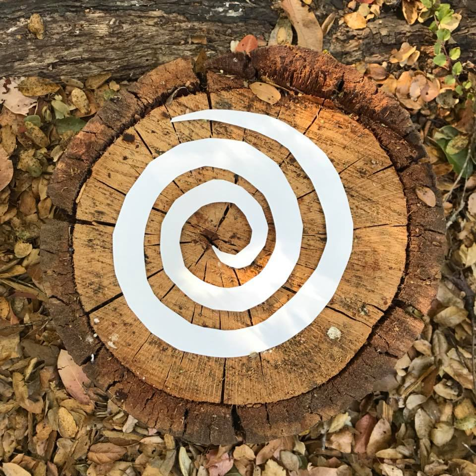 Day 260. Tree Trunk Stump with Paper Spiral