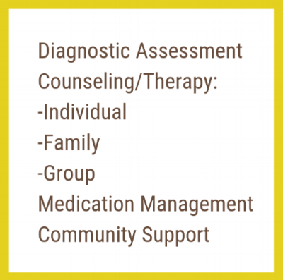 Diagnostic Assessment Counseling_Therapy_ -Individual -Family -Group Medication Management Community Support.png