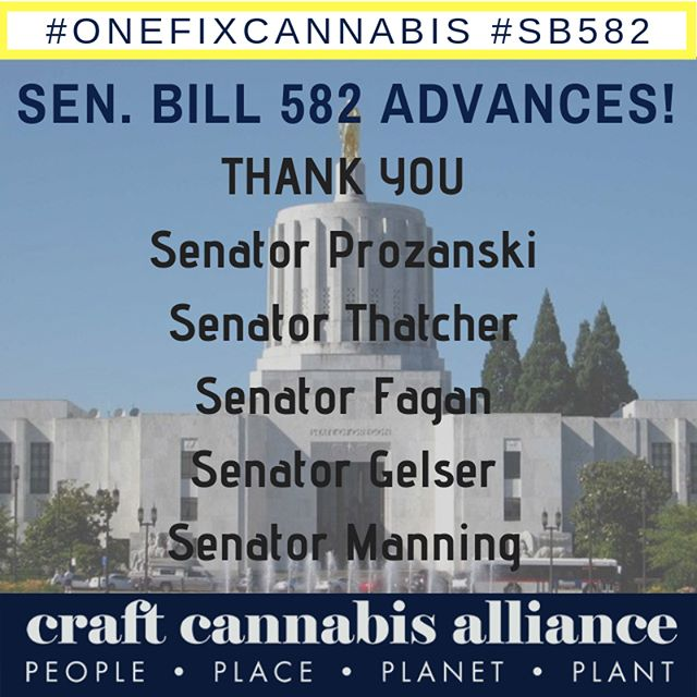 """🔥🔥🔥 . Oregon's #cannabis #export bill cleared a major hurdle today when the Senate Judiciary Committee voted 5-2 to SB 582 to the floor with a """"do pass"""" recommendation. On to the full Senate! #onefixcannabis #onefix #licensedinterstatetransfer #craftcannabis #GetLIT 🔥🔥🔥"""