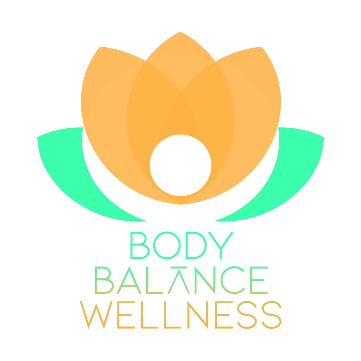 Body Balance Wellness Center