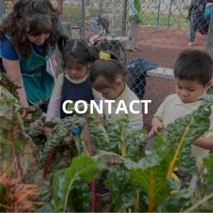 Contact Children's Day Nursery and Preschool in Passaic New Jersey