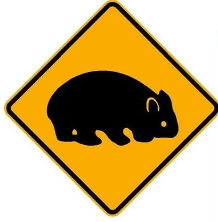 Wombat Juntion.jpg