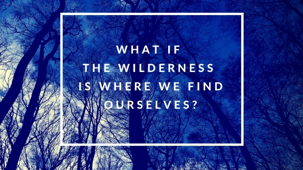 What if the wilderness is where we find ourselves_.jpg