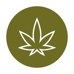 Cannabis Track Icon.jpg