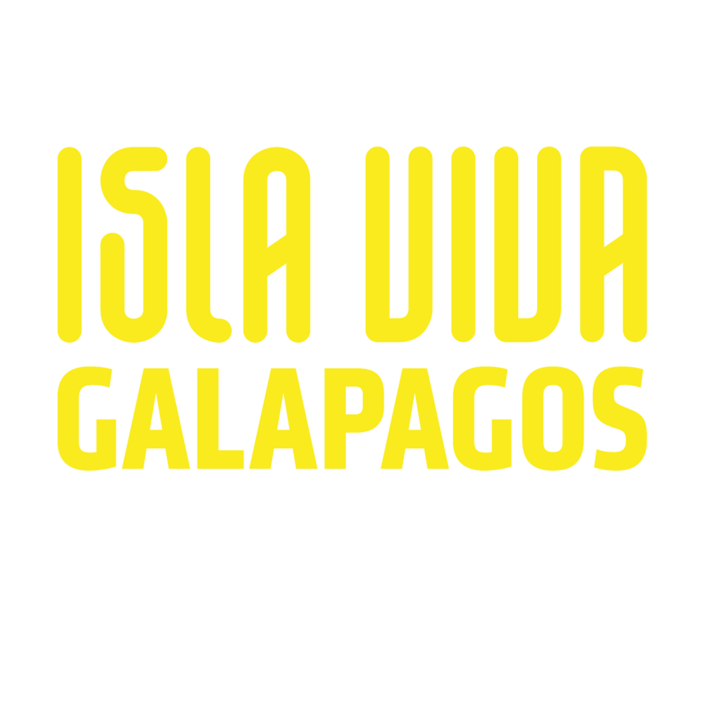 logo-amarillo.png