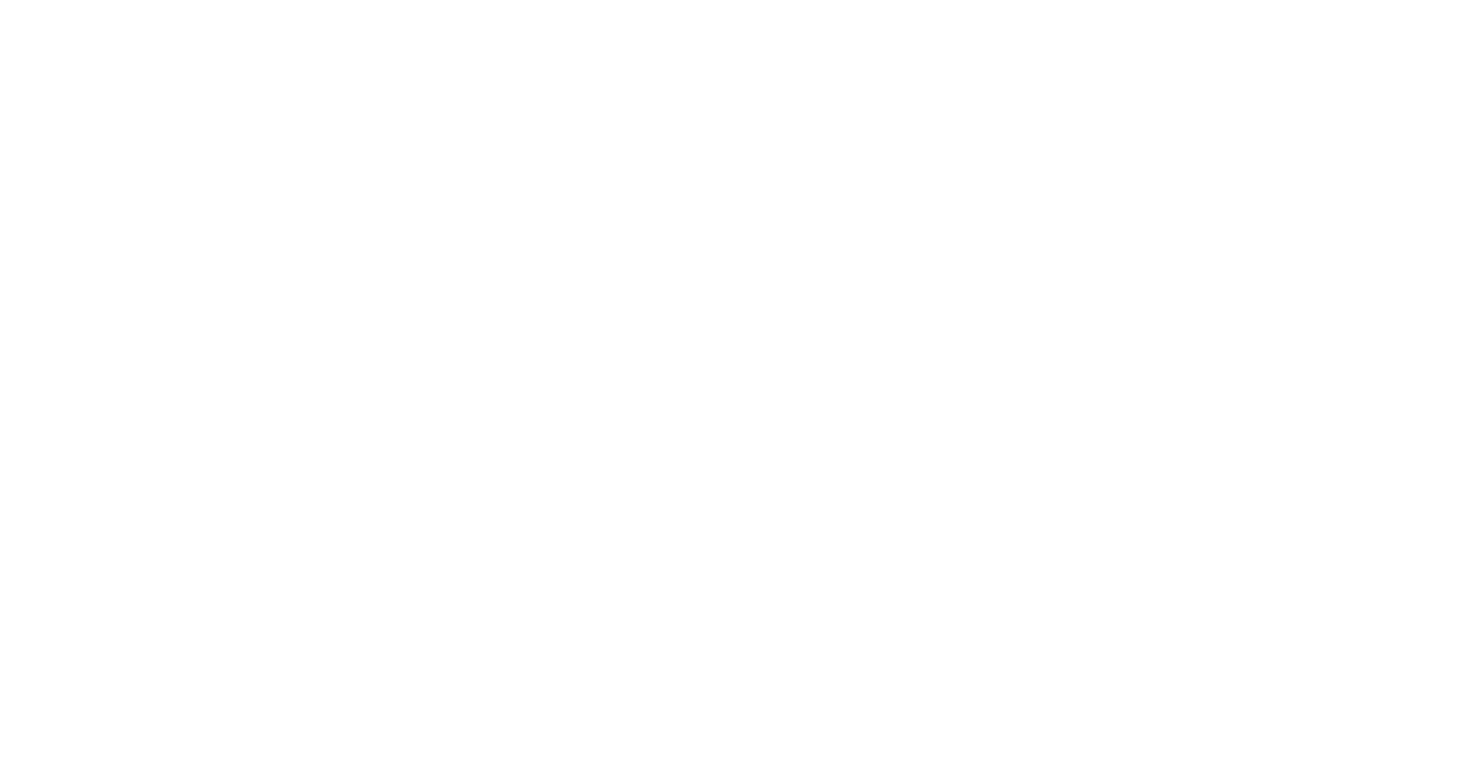 Project Ronin