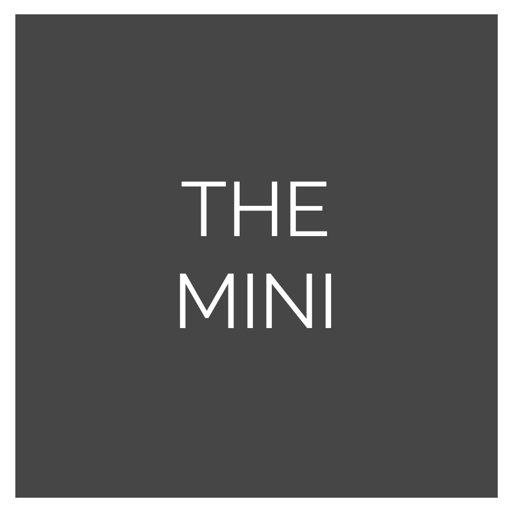 TheMini500a.png