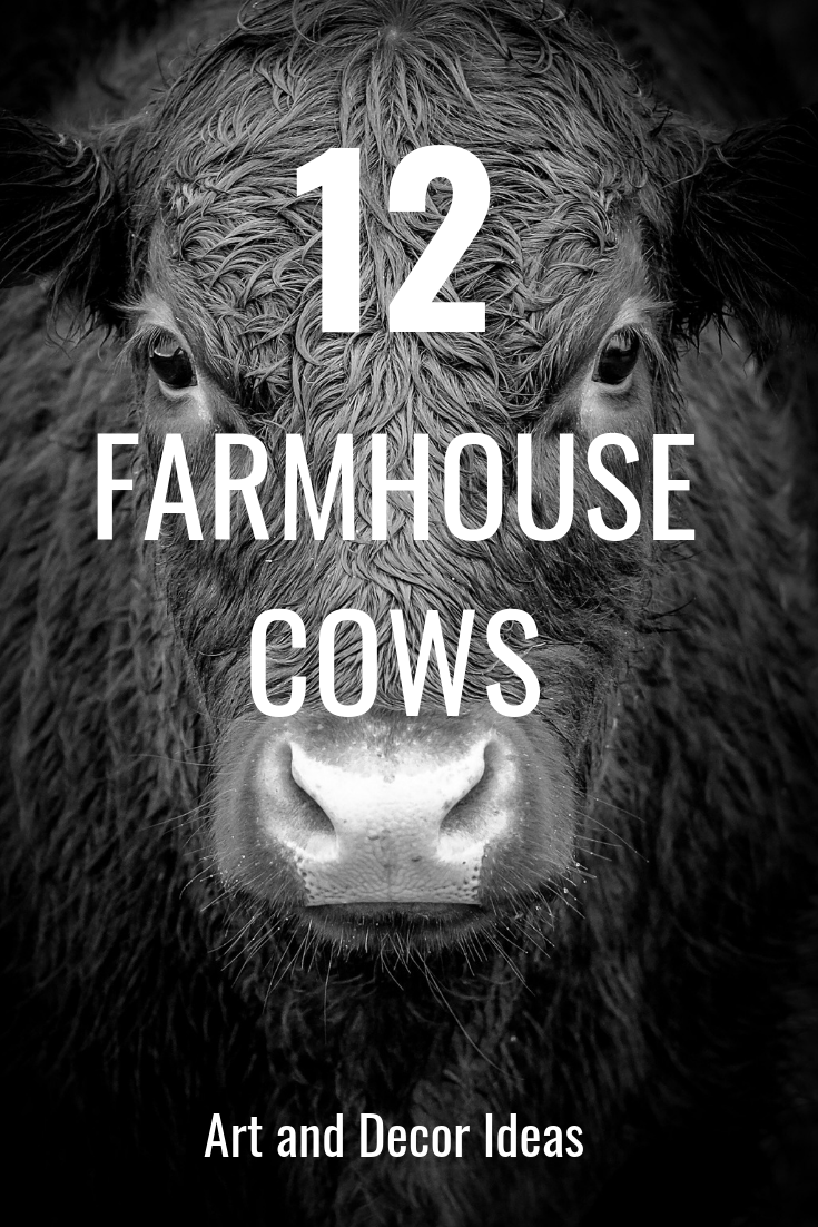 12 Farmhouse Cow Painting And Wall Decor Ideas Pieces