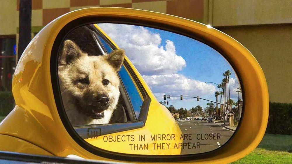 mirrorBraxeea.jpg