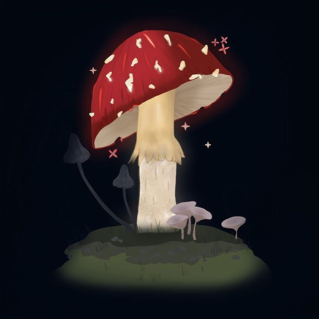"""""""Happiness can be found in the darkest of times, if one only remembers to turn on the light"""" (if you don't know who this quote is by... get out 💨) . . . #womenofillustration #illustrationartists #illustration #procreate #ipadillustration #mushroom #magic #cute #igdaily #hp #dumbledore"""