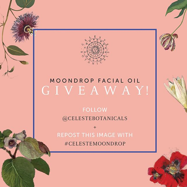 [Ended]✨GIVEAWAY✨Gifting our Moondrop calming facial oil with Blue Tansy, Sandalwood, Turmeric, and Rose!  To enter: 🌟follow us 🌟repost this image with #celestemoondrop.  We will be selecting two winners one week from now on Thursday, 10/26! . . .  #celestemoondrop #contest #giveaway #win #giveawayalert #free #instagood #celestebotanicals #greenbeauty #skin #beauty #naturalskincare #ayurveda #crueltyfree #vegan #cleanbeauty #antiaging #skincare #glow #facialoil #bluetansy #rose #turmeric #sandalwood #october #organic