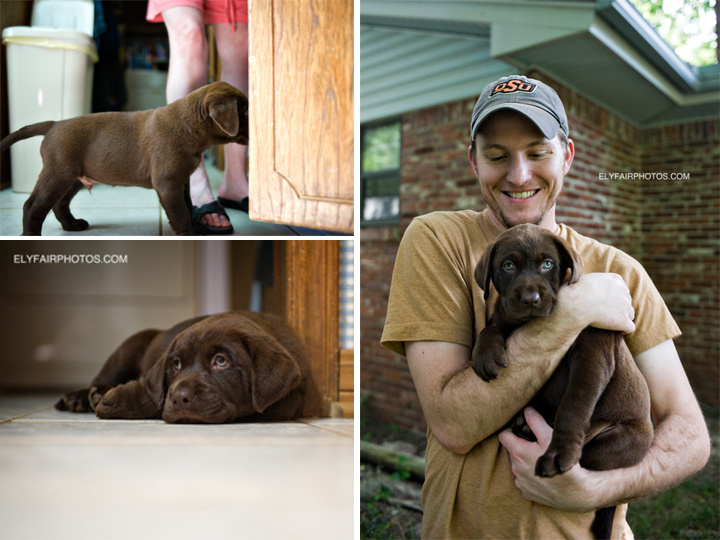 A happy new brother holds his parents new pet while he explores and sleeps in his early stages of his new home.  This puppy resides in Oklahoma City and Ely Fair Photography was happy to take the new pet portraits