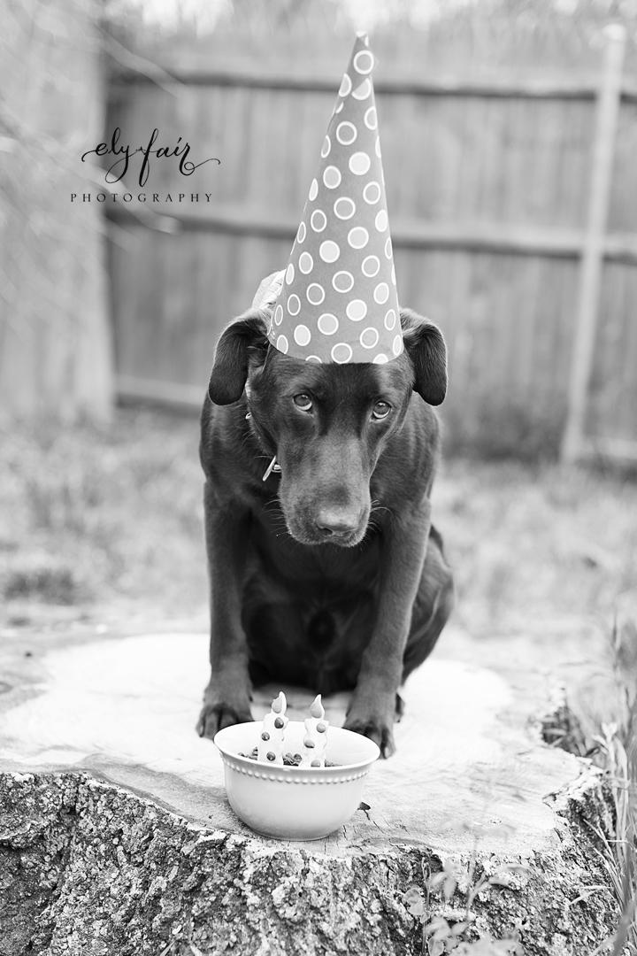 Petes_4_birthday