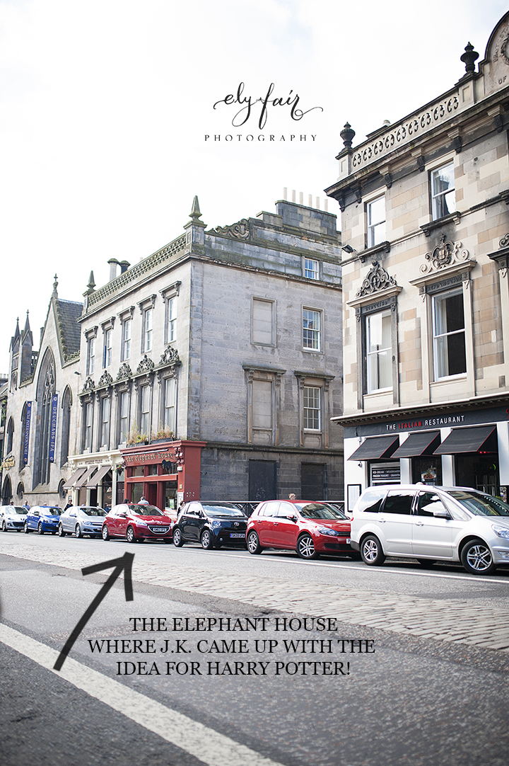 Edinburgh, Scotland, The Elephant House
