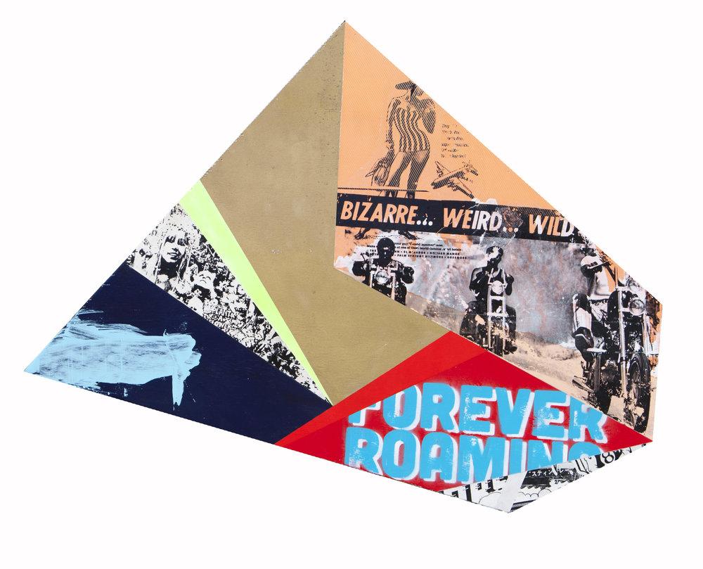 Forever Roaming.jpg