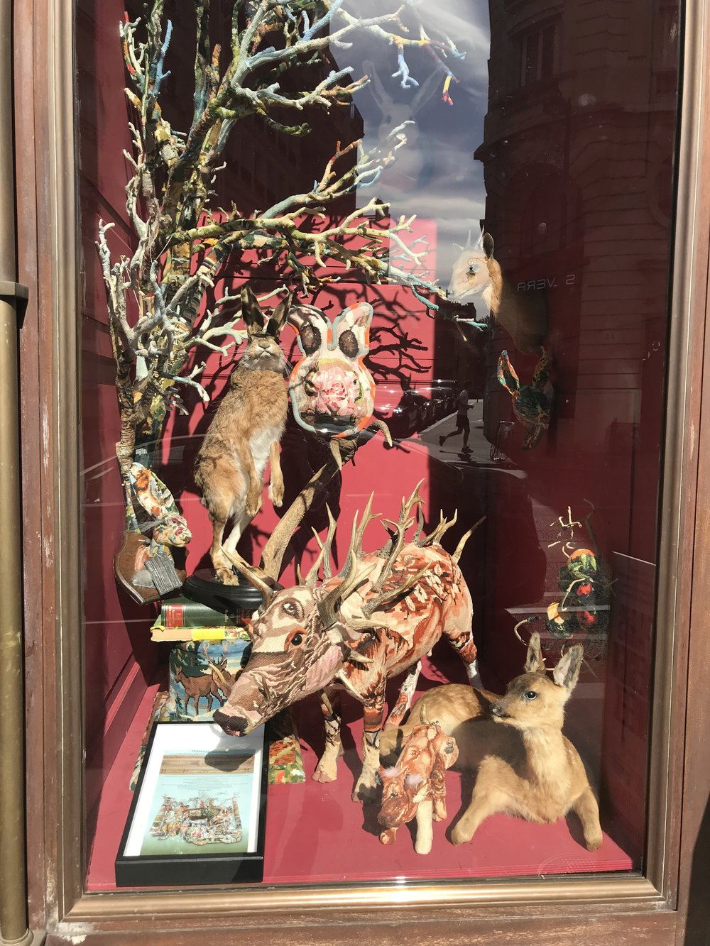 FASCINATING WINDOW DISPLAYS OF DEYROLLES