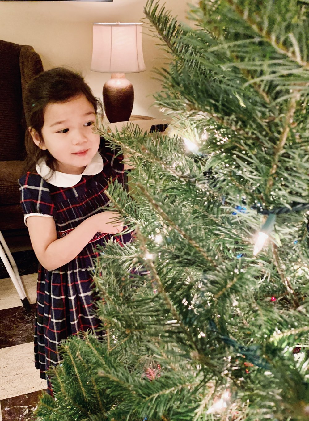 Christmas dress - handmade smocke dress - Paris boutique - kids