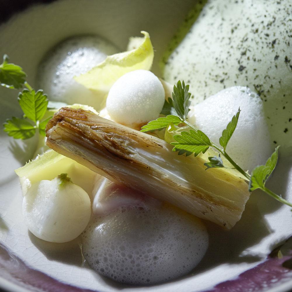 Andre Gerrits | Zeehaan, zacht gegaarde zeehaan met een zalf van pastinaak, witlof, chips van koolrabi en saus van kardemom, sinaasappel en steranijs