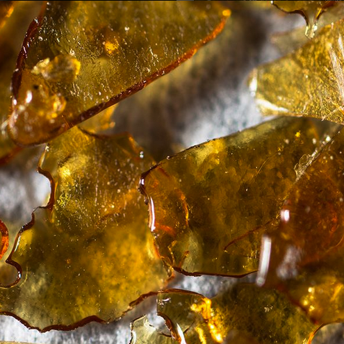 Embark Cannabis Quality Purity Extraction Bubbleman 11.png