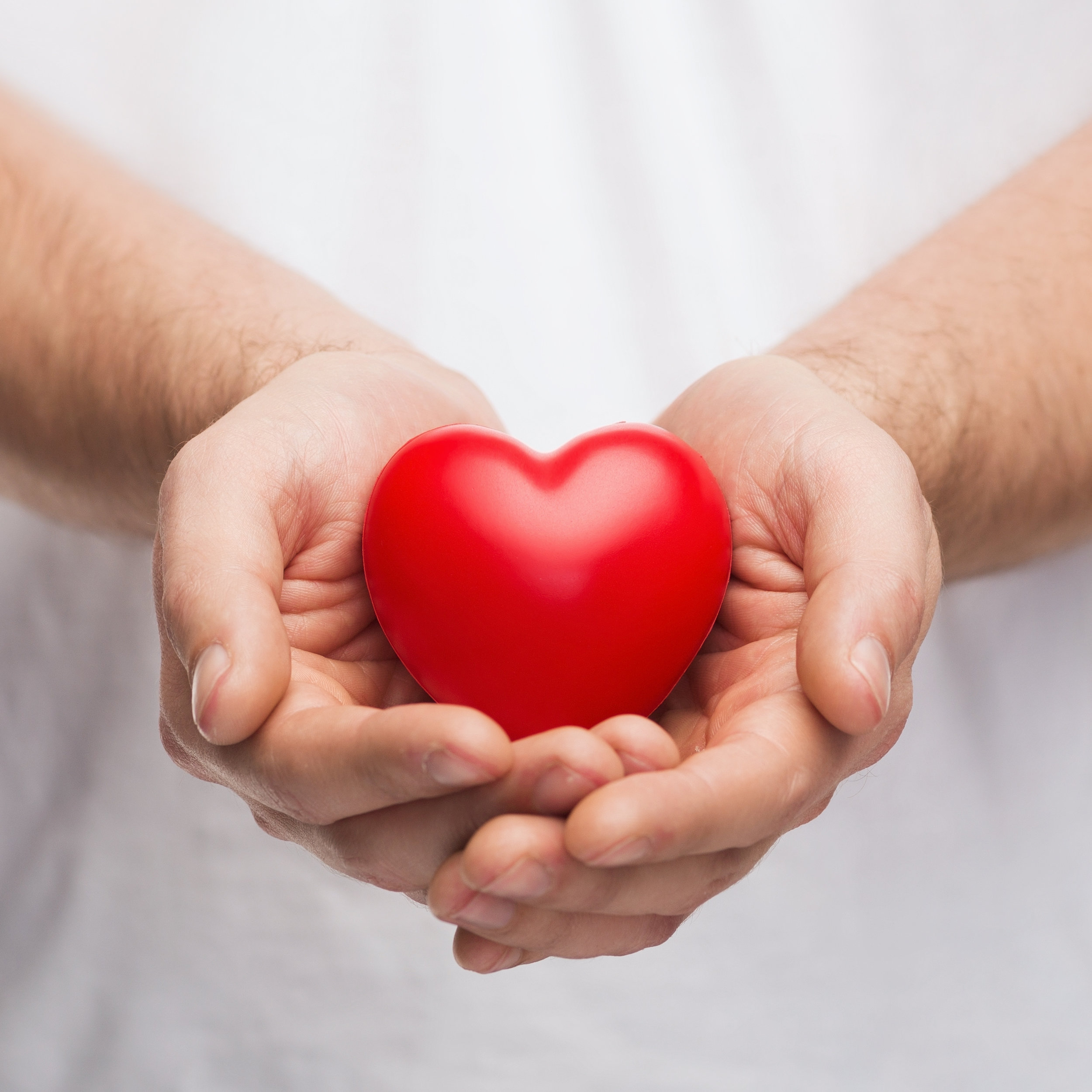 people, relationship and love concept - close up of mans cupped hands showing red heart