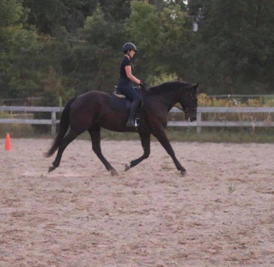 Hannah Pellerito - Holds prestigious Advanced Certification from PATH with the goal of pursuing a Master Instructor CertificationCertified by PATH in 2015Involved with O.A.T.S since 2001, when her brother, Nick, started riding.Riding horses since 2001 with a background in Dressage and Eventing - has won multiple championships at recognized Dressage shows for the United States Dressage Federation.Teaching style emphasizes the importance of learning the basics and grasping those concepts before moving on towards independence
