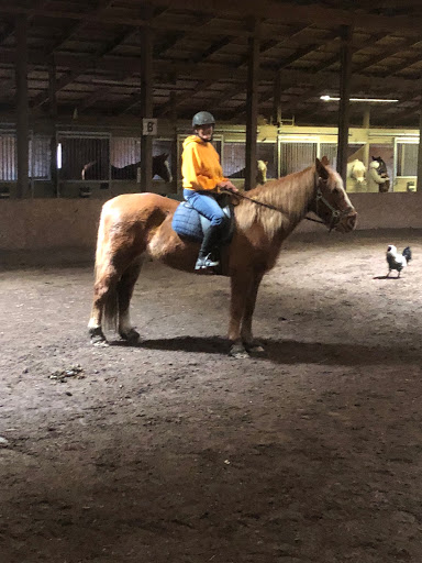 """Ruth Hannam - Certified by PATH in 2015Started volunteering with O.A.T.S in 2008""""I started volunteering with O.A.T.S as a way to get close to horses, my lifelong passion, again. When I left, I always felt an amazing sense of love and hope. It was the desire to share this feeling with others that pushed me to become an instructor. The smiles make every time I come to O.A.T.S. worth it."""""""
