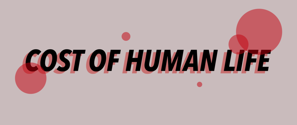 cost-of-human-life-banner.png