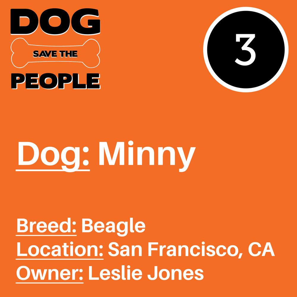Dog STP website Art3.jpg