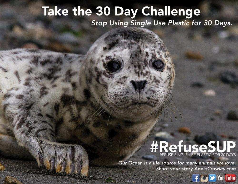 30 Day Challenge Refuse Single Use Plastic Seal.jpg
