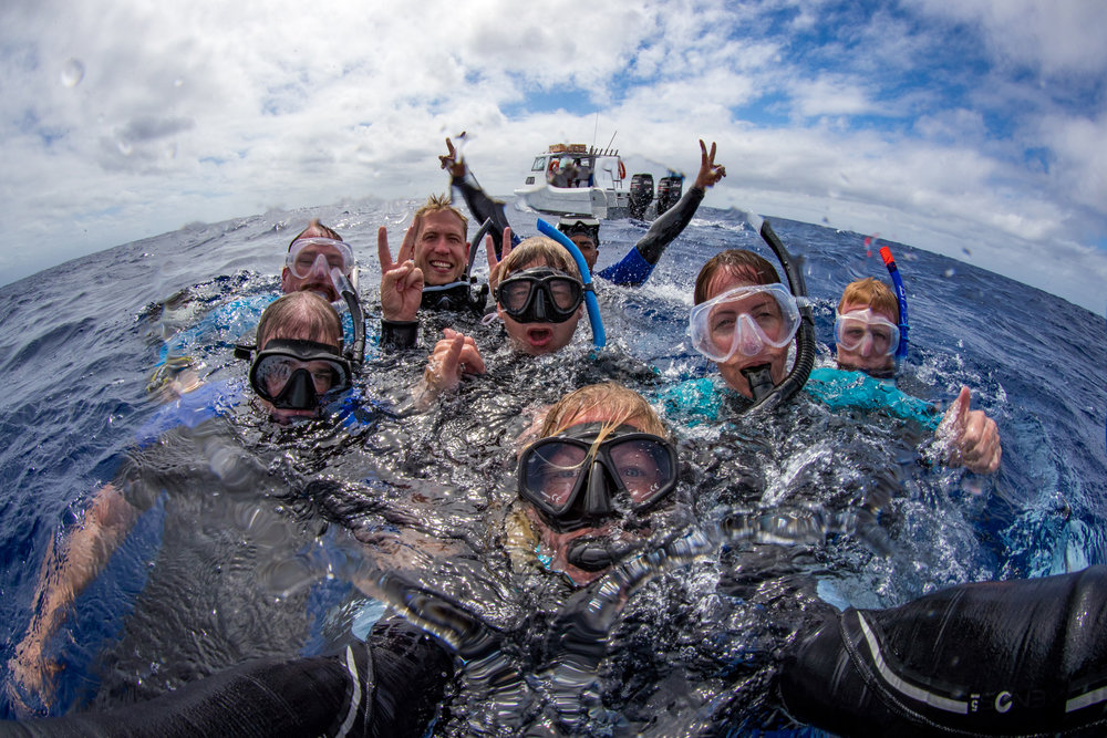 Join our team. Travel with us on an adventure to explore our world. Be inspired to take action for our ocean. These snorkelers went swimming with humpback whales & whale sharks.