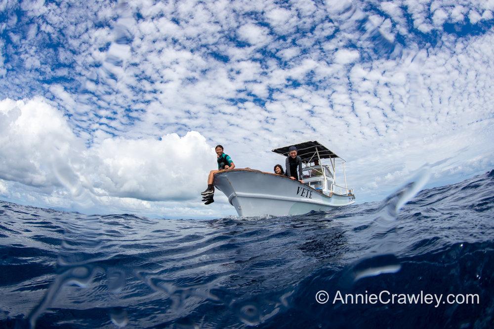 Tonga Humpback Whales Annie Crawley-9574.jpg