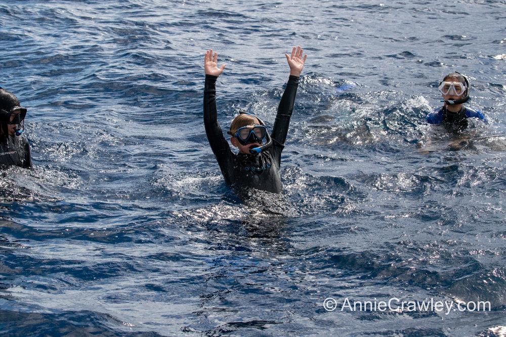 Tonga Humpback Whales Annie Crawley-9893.jpg