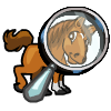 foal preview.png