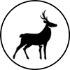3DArchery-Icon.png