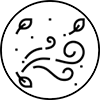 Windy-Icon.png