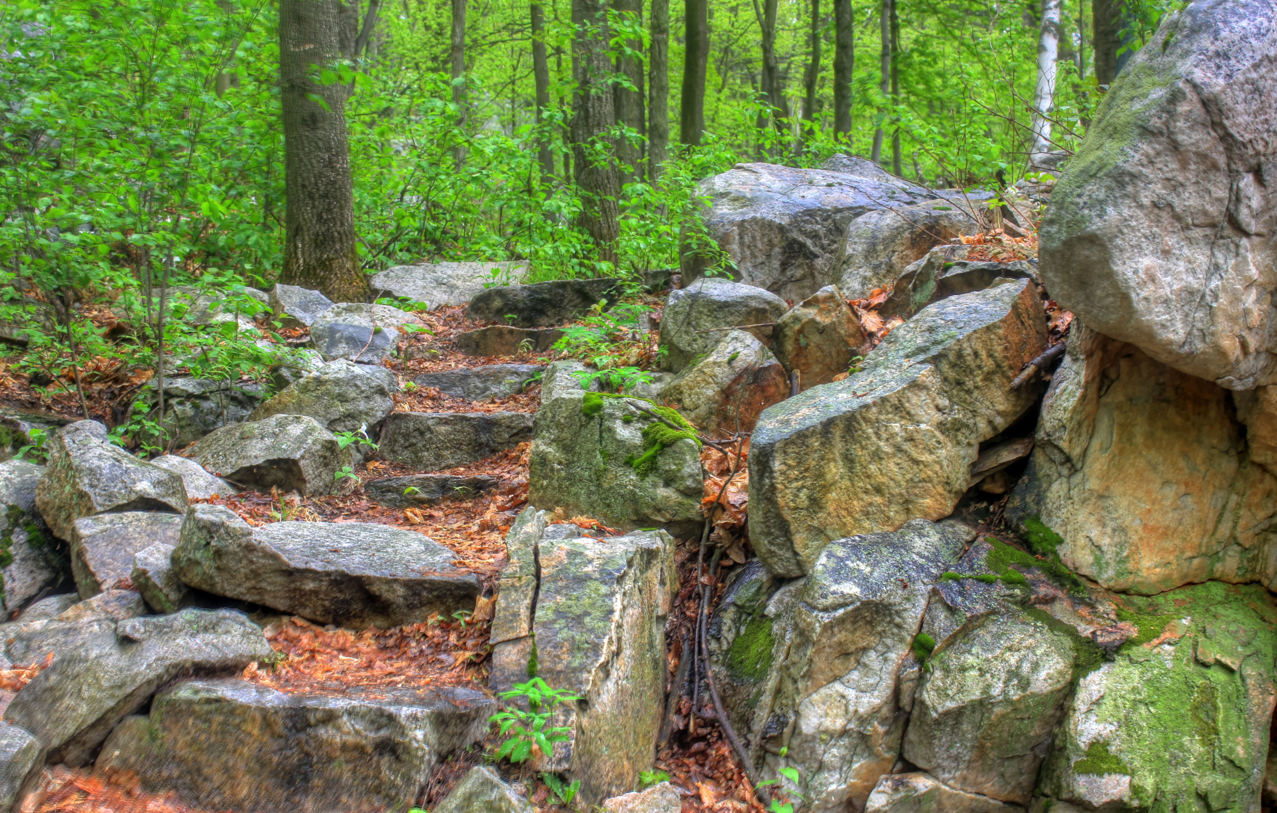 wisconsin-rib-mountain-state-park-rocks-and-stairs