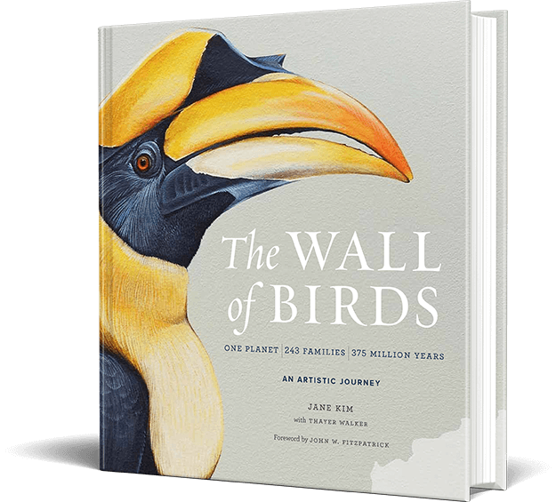 wall-of-birds-img-left.png
